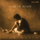 Liquid Mind | 2 Slow World